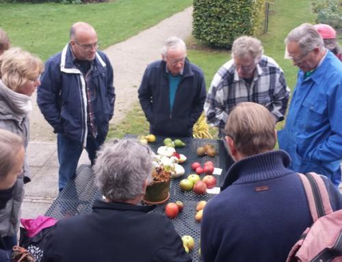 Verslag appelplukdag en high tea op Landgoed Oostbroek | 22 oktober