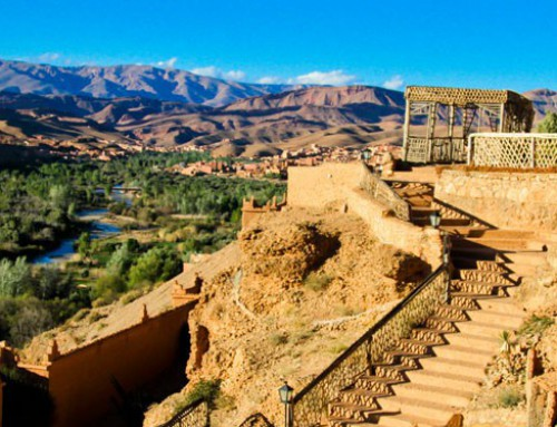 Yogareis naar de Vallei van de 1000 kasbahs | Marokko